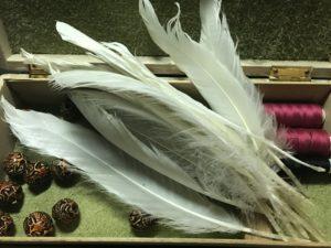 IMG 9725 300x225 - Лебединые перья на удачу