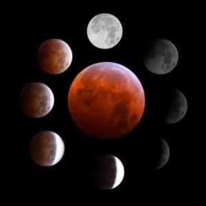 3 avgusta Luna 300x300 - 3 августа 2020, понедельник
