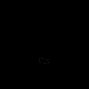 26 dekabrya 361 simvol dnya goda 01 300x300 - 26 декабря 2020, суббота