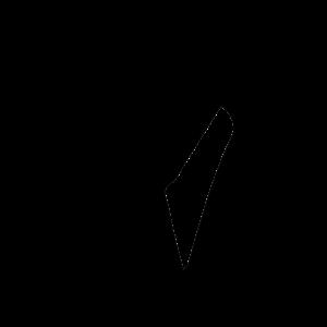 8 dekabrya 343 simvol dnya goda 01 300x300 - 8 декабря 2020, вторник